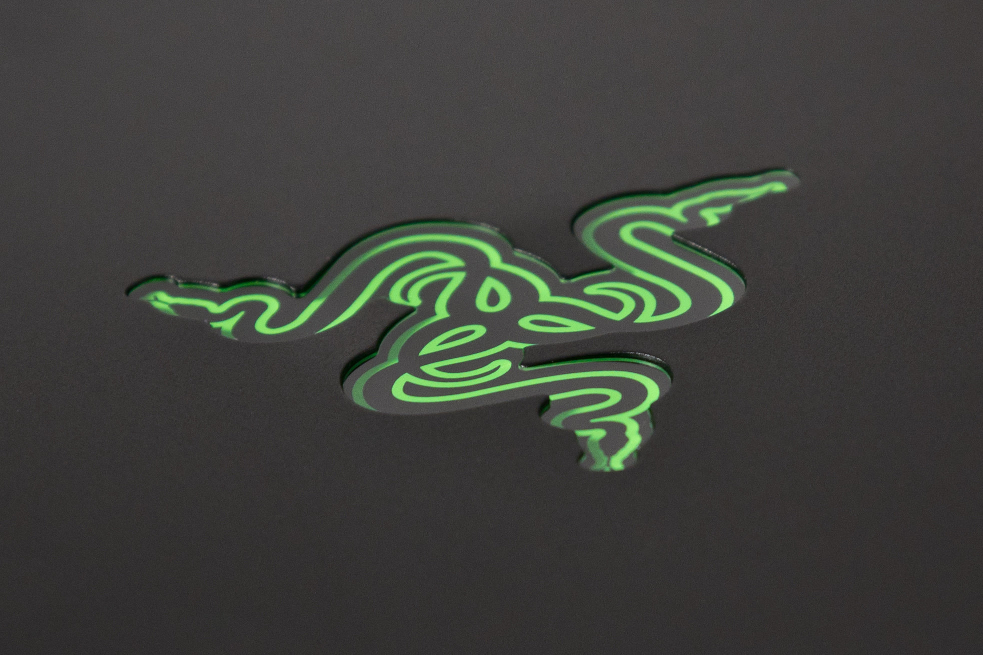 A photo of the Razer Blade Pro's case-mounted logo.
