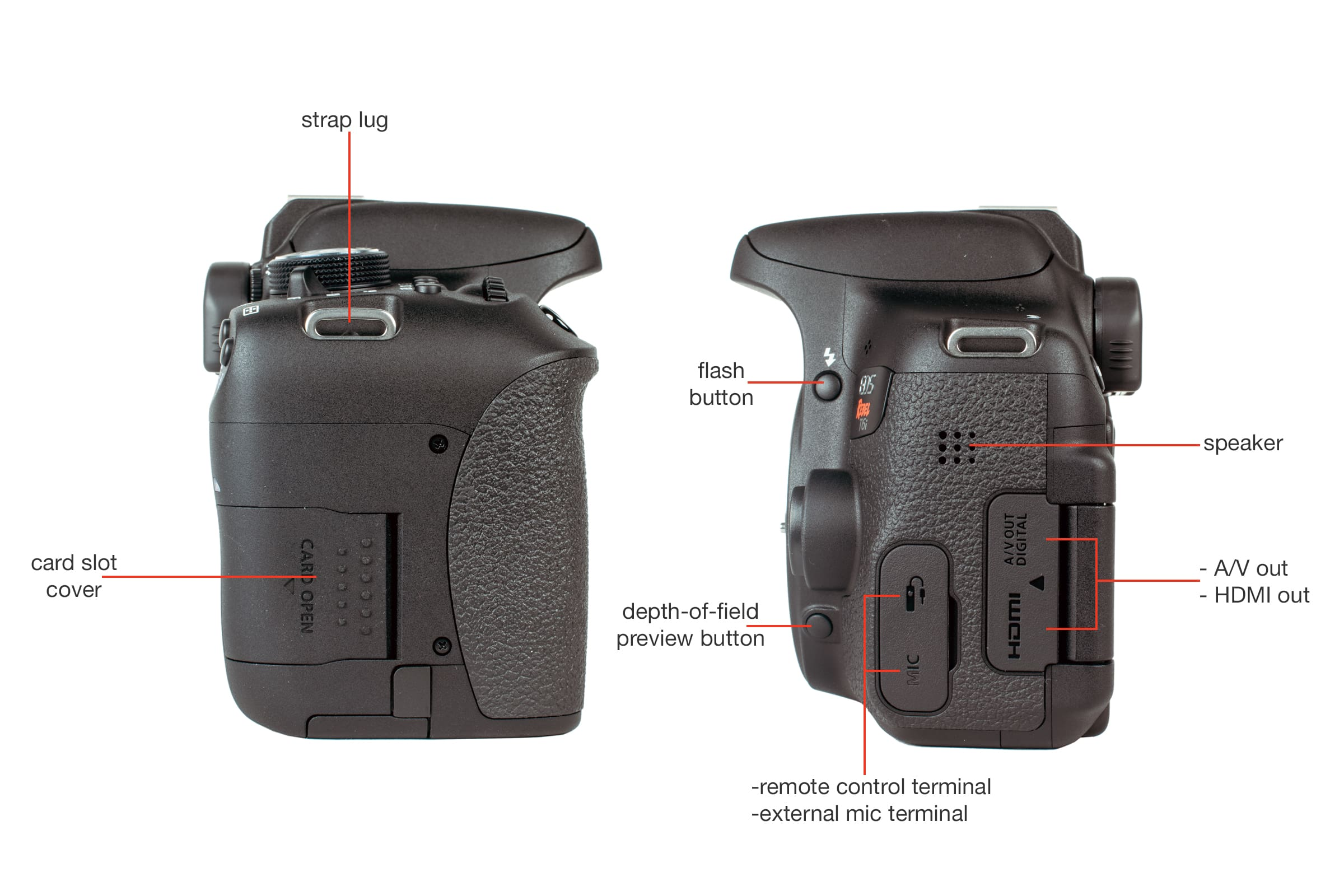Side view of the Canon T6i.