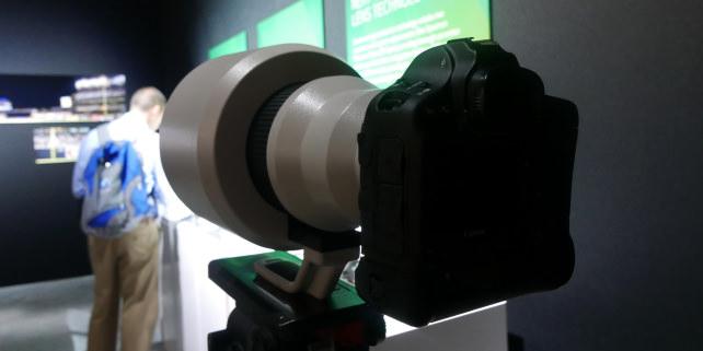 Canon 600mm f/4L DO BR Optical Sample