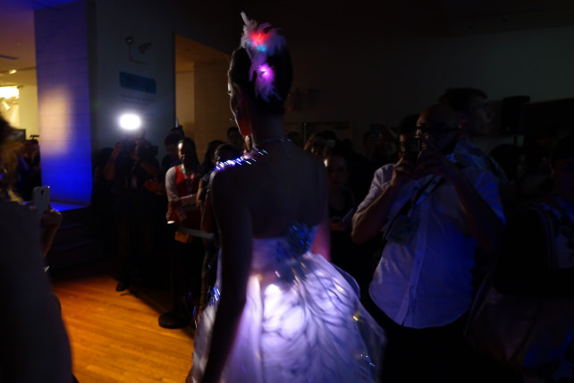 Biometric Bride recesses