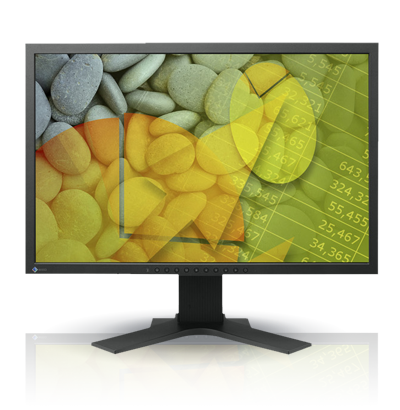 Product Image - Eizo FlexScan S2202W