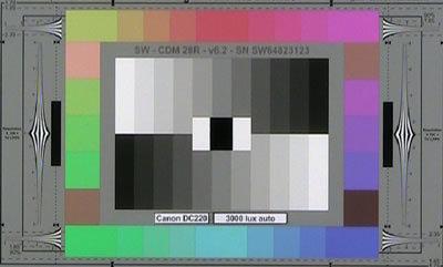 Canon_D220_3000lux_auto_web.jpg