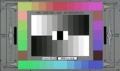 Canon_D220_3000lux_vivid_web.jpg