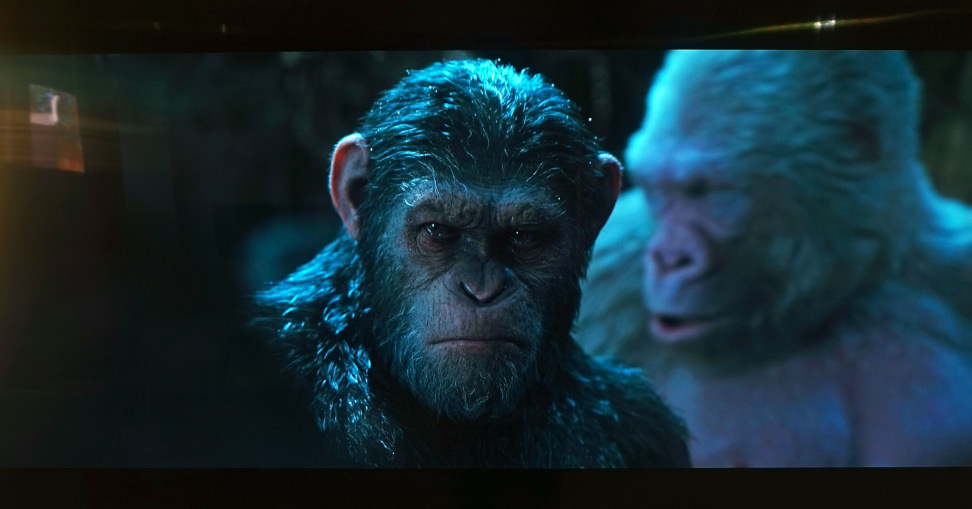 MU9000-Apes-1