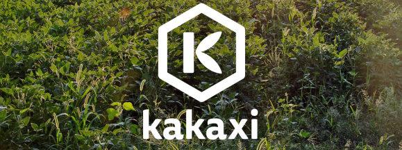 Kakaxi hero