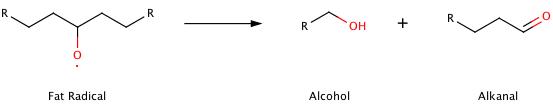 lipid oxidation.png