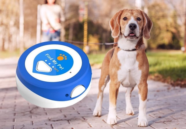 Find My Pet Nano GPS Dog Tracker