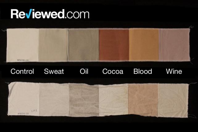 stain-strips-science.jpg